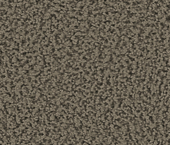 Smoozy 1601 Greige by OBJECT CARPET | Rugs