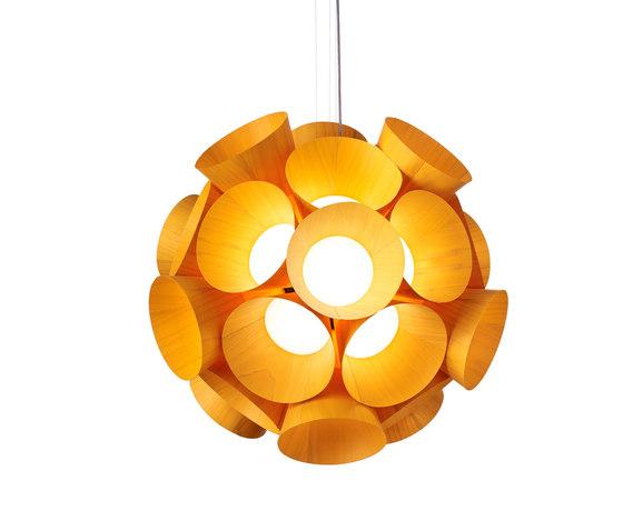 Dandelion S von lzf | Allgemeinbeleuchtung