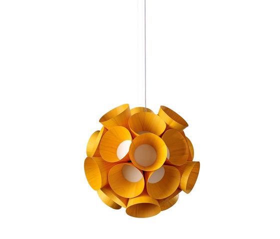 Dandelion von lzf | Allgemeinbeleuchtung