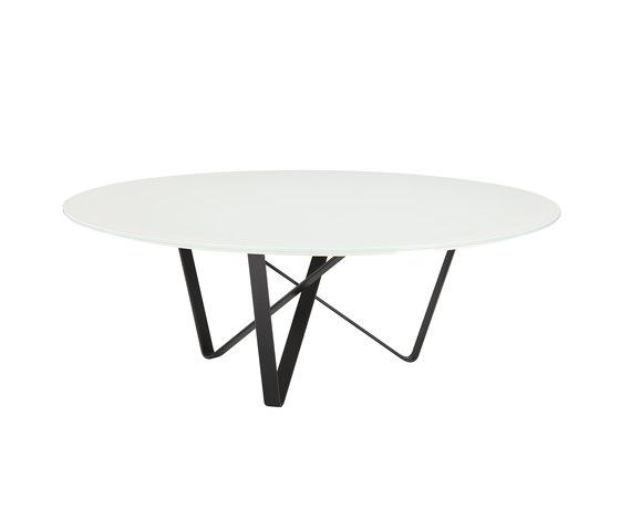 Narcissus Coffee Table von Koleksiyon Furniture | Couchtische