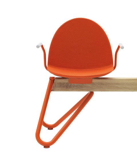 Camel von Segis | Sitzbänke