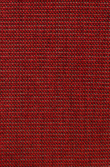Eco Iqu 280019-10065 by Carpet Concept | Wall-to-wall carpets