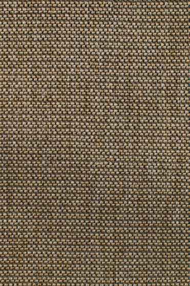 Eco Iqu 280019-40594 by Carpet Concept | Wall-to-wall carpets