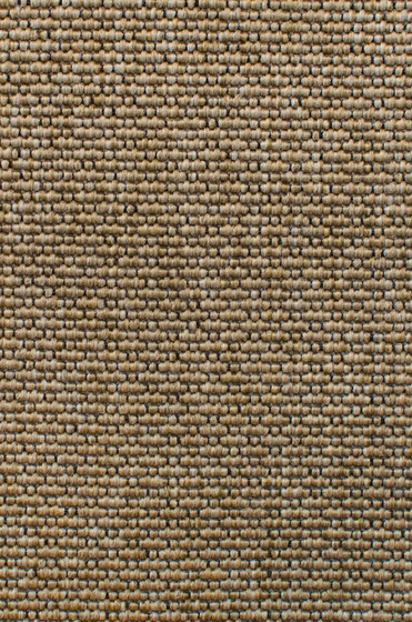 Eco Iqu 280020-40594 by Carpet Concept | Wall-to-wall carpets