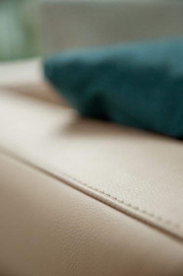 Bowie by Alberta Pacific Furniture   Sofas