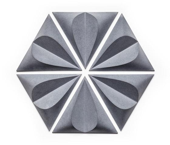Seed di KAZA | Piastrelle cemento