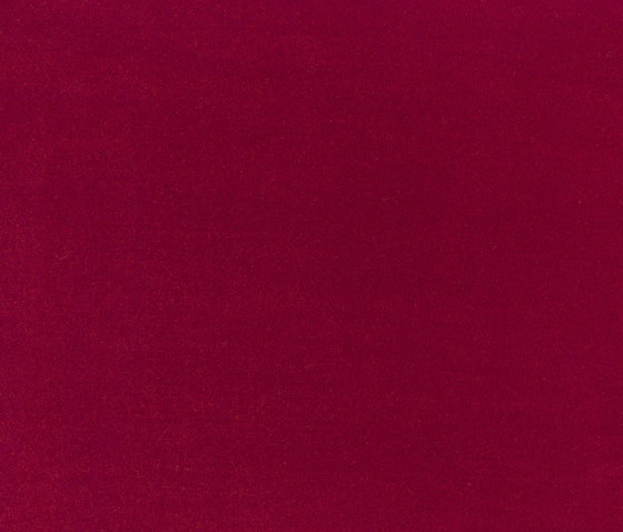 Velours Oskar 10624_51 by NOBILIS   Drapery fabrics