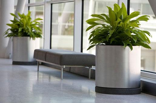 Universal Planter di Forms+Surfaces® | Vasi piante