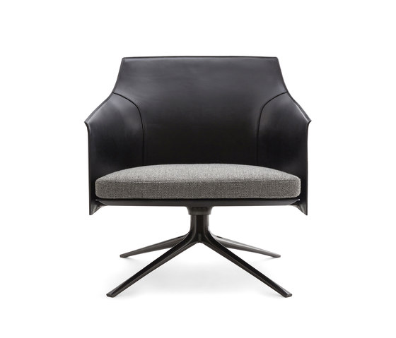 Stanford armchair by Poliform | Armchairs