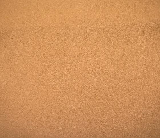 Elmosoft 22024 de Elmo | Cuero natural