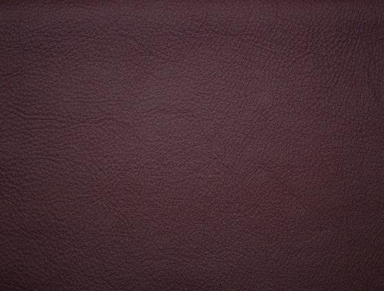 Elmosoft 75010 de Elmo | Cuero natural