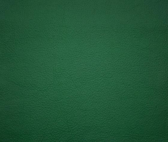 Elmosoft 88020 de Elmo | Cuero natural