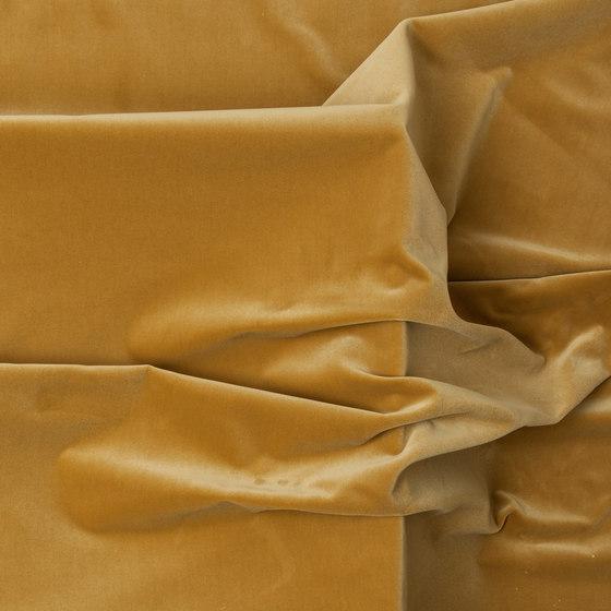 Perseo Oro de Equipo DRT | Tejidos para cortinas
