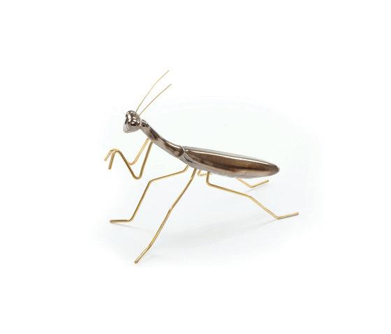 Fauna Praying Mantis von Mambo Unlimited Ideas | Objekte