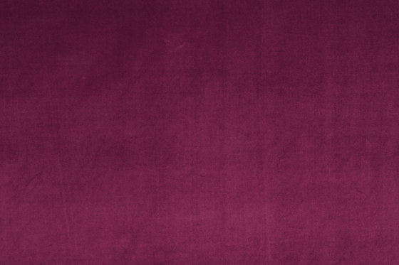 VIP 142 by Christian Fischbacher   Drapery fabrics