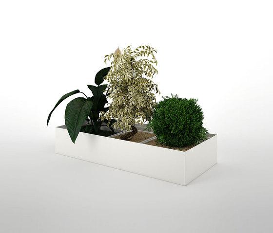 Primo Modular Elements | Plant and flower container unit di Dieffebi | Vasi piante