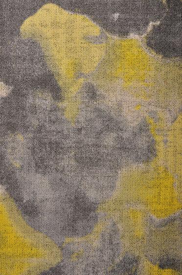 Montgolfier 2455870 de ege | Moquettes