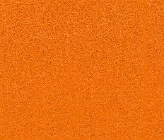 Como   Orange di MI-Millennium International   Finta pelle