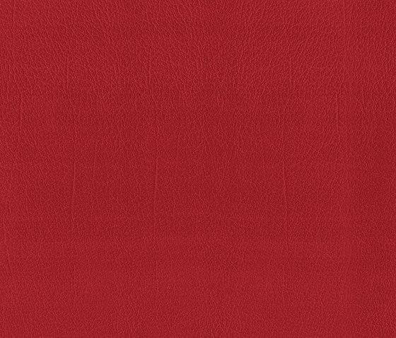 Como | Kirsche by MI-Millennium International | Faux leather