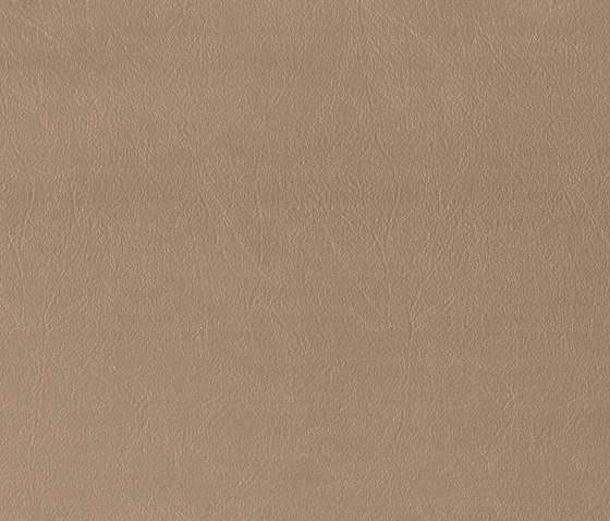 Bergamo | Taupe de MI-Millennium International | Cuero artificial