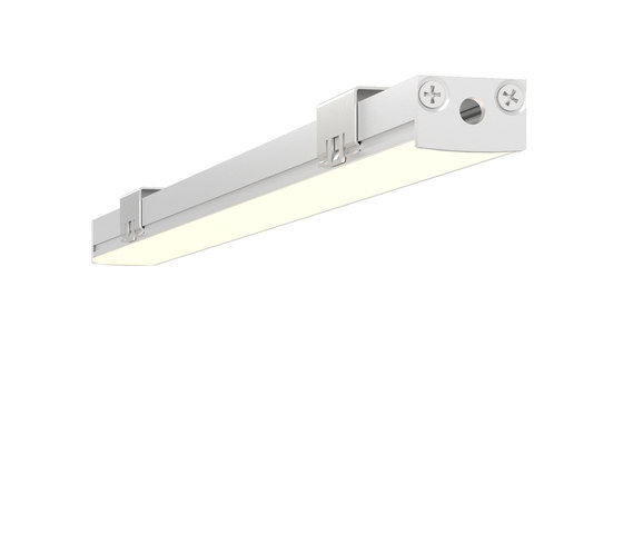 L109 | matte clear anodized by MP Lighting | Ceiling lights