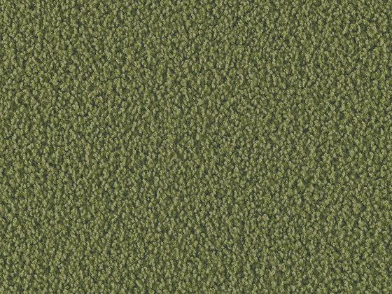 Elara 4e93 von Vorwerk | Teppichböden