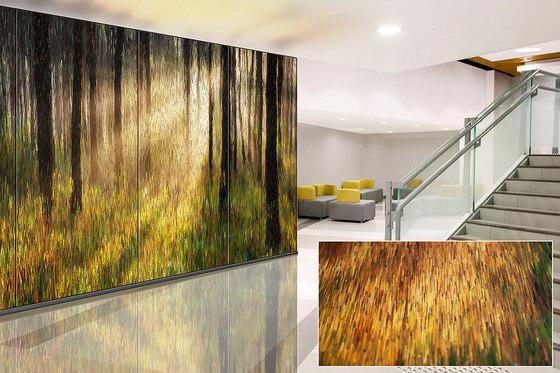 ViviSpectra VEKTR Glass de Forms+Surfaces® | Vidrios decorativos