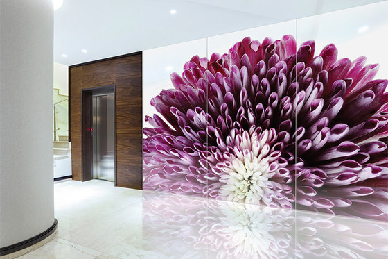 ViviSpectra Zoom Glass by Forms+Surfaces® | Decorative glass