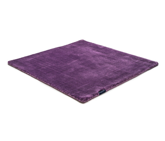 Studio NYC Pure lavender by kymo   Rugs