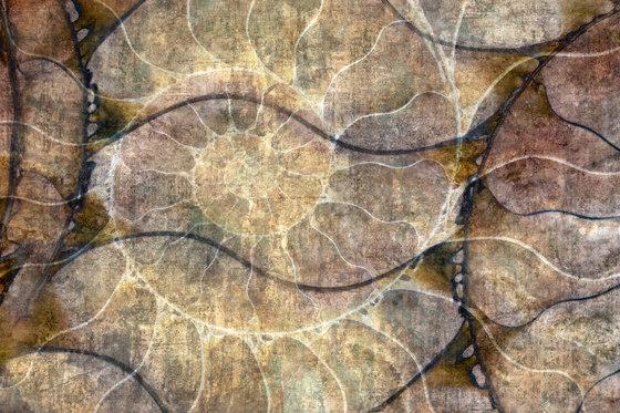 Nautilus de GLAMORA   A medida