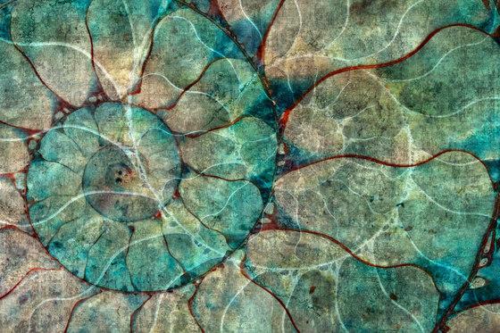 Nautilus de GLAMORA | A medida