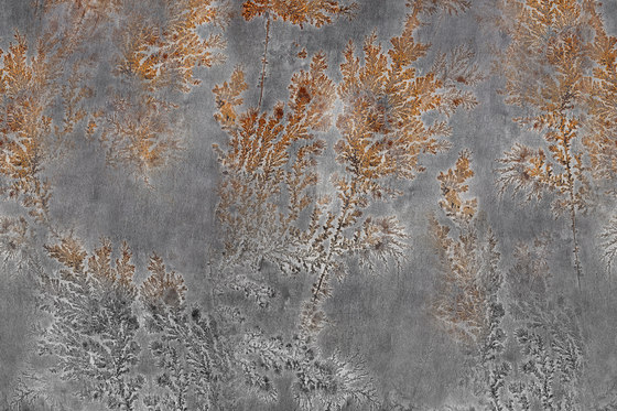 Fossil Octocorallia by GLAMORA | Bespoke wall coverings