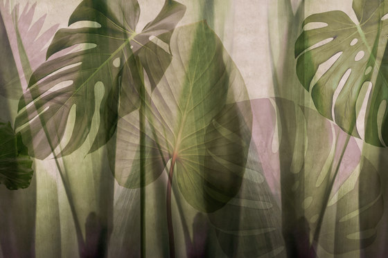 Paysage Equatorial Jungle by GLAMORA | Bespoke wall coverings