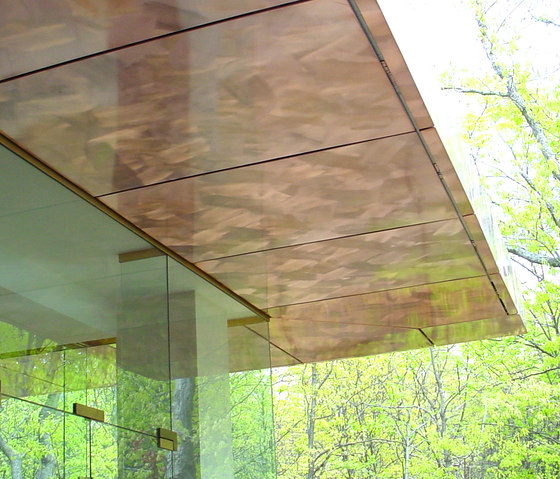 Custom Ceiling in Classic Metal Collection on Clouds - Exterior by Moz Designs | Metal sheets