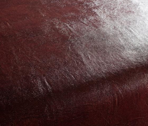 Secc 1010 by Carpet Concept | Drapery fabrics