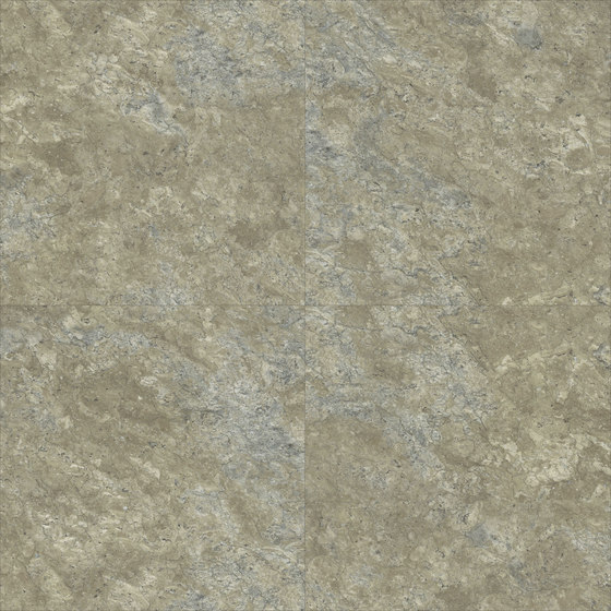 Pyrite - Lichen by Aspecta | Synthetic panels