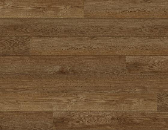 Contemporary Oak - Caramel by Aspecta | Synthetic panels