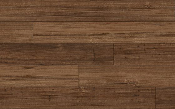 Spotted Gum - Cognac by Aspecta | Synthetic panels
