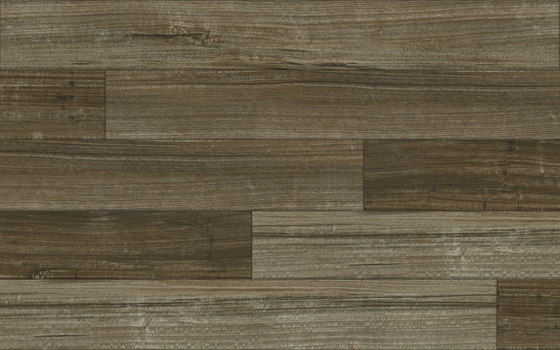 Spotted Gum - Dune by Aspecta | Synthetic panels