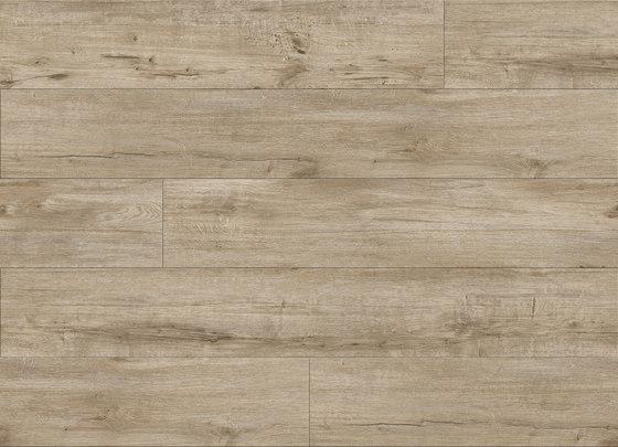 Brindle Oak - Sand Drift by Aspecta | Synthetic panels