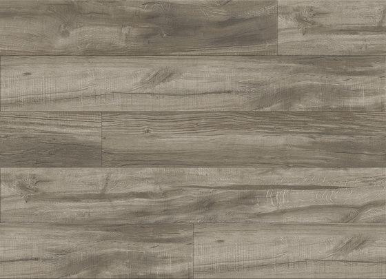 Runyon Oak - Ashen di Aspecta | Lastre plastica