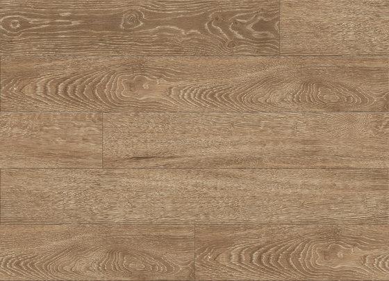 Tally Oak - Burnished Gold di Aspecta | Lastre plastica