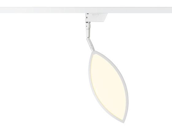 Flavia - Spot by OLIGO | Ceiling lights