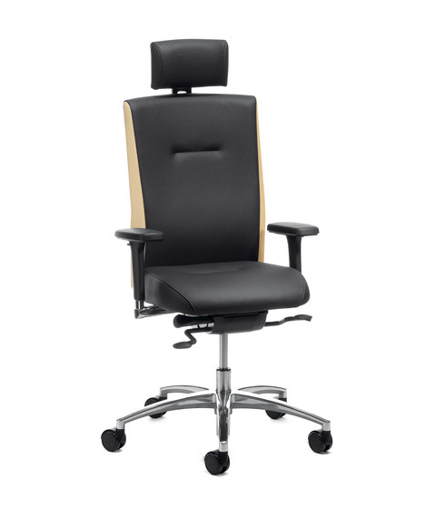 Mireo® 6300 by Köhl   Office chairs