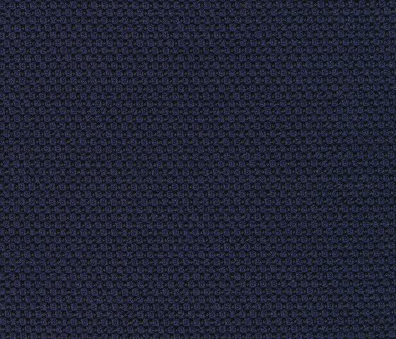 Opera Navy by rohi   Drapery fabrics
