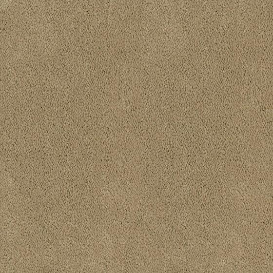 Asteranne Broadloom by Desso by Tarkett | Wall-to-wall carpets
