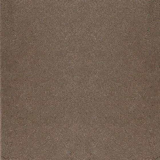 Asteranne Broadloom by Desso by Tarkett | Wall-to-wall carpets