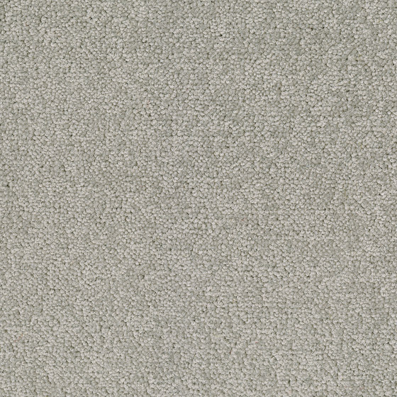 Palatino Broadloom by Desso by Tarkett | Wall-to-wall carpets