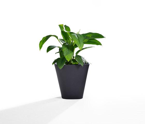 Kono de Derlot Editions | Macetas plantas / Jardineras