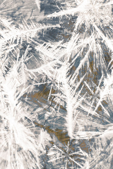 Frozen | grey by moooi carpets | Wall-to-wall carpets